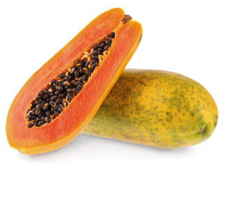 papaya-formosa-semi-seeds-online