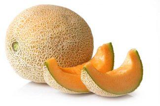 melone retato semi online bio